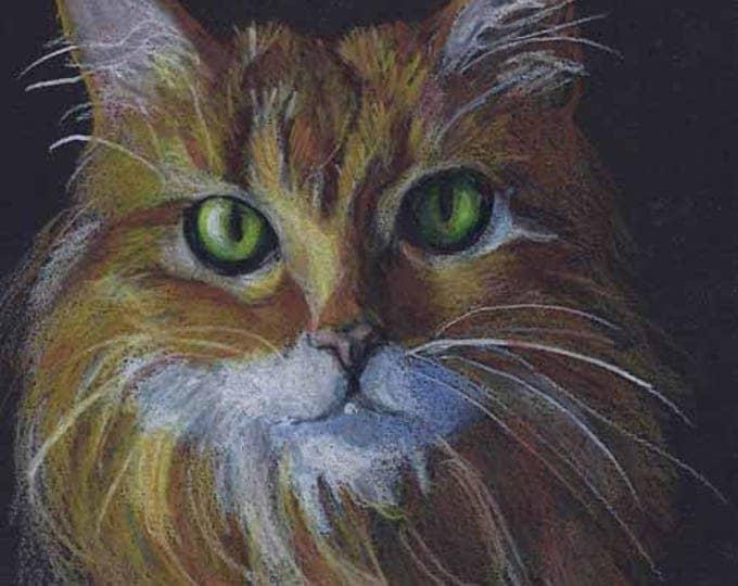 "Dramatic Orange Cat Fine Art Print of my Drawing, 5"" x 7"" Gift Certificate"