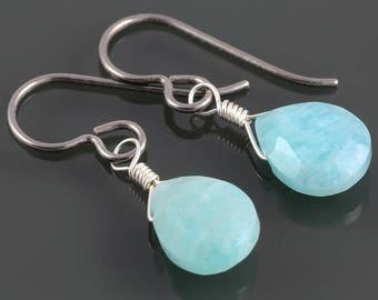 Amazonite Earrings. Titanium Ear Wires. Genuine Gemstone. f17e034