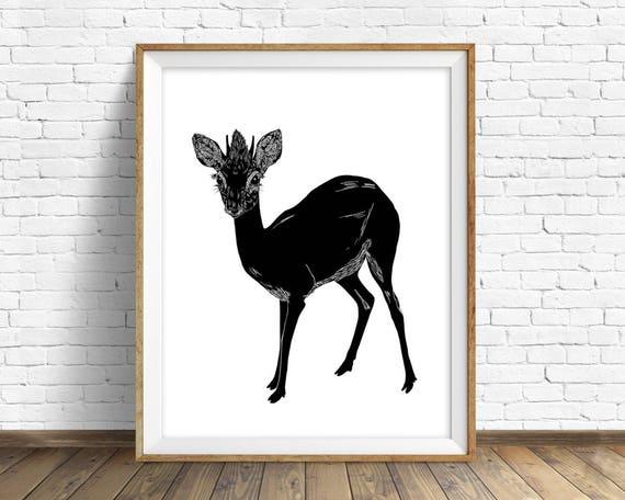 """Dik Dik"" - animal art print"