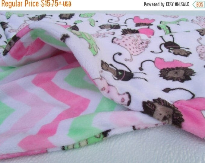 SALE Soft Pink and Mint Chevron Print Minky Baby Blanket,  Can Be Personalized