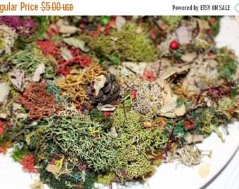 Save25% Lichen potpourri-Lichen Confetti-3 oz sandwich bag full-Preserved Reindeer moss -dried botanicals-preserved mood moss-dried leaves a