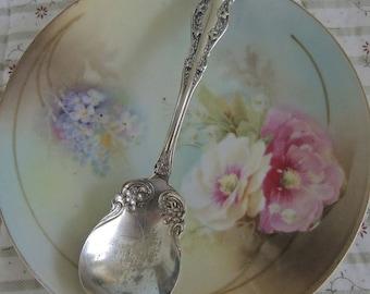 Vintage Wm. Rogers Silver Plate Sugar Spoon,Jam Spoon, Shabby Chic Silver, Sugar Spoon