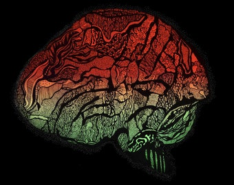 Abstract Brain Drawing