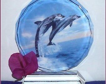 GORGEOUS Dolpin image on 12 oz  multi-faceted quartz crystal!