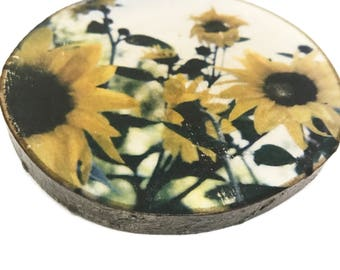 "Daisy bunch Flower Photo Transfer Art on Natural Wood Round 4"" - Photography Rustic Artsy"