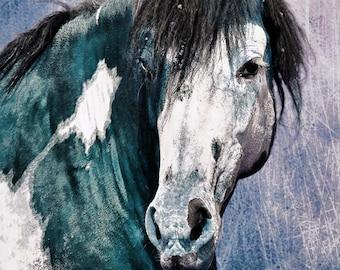horse wall art decor, horse wall art large, horse large canvas, equine fine art, photo, stallion, Southwestern decor, rustic decor, horse