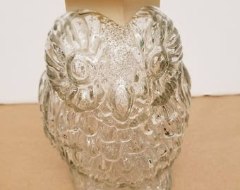 Vintage Glass Wise Old Owl Bank