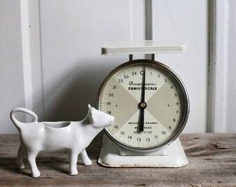 Vintage White Scale