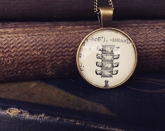 BONE NECKLACE - vertebrae necklace - vintage anatomy - dictionary jewelry - gifts for book lovers - oddities and curiosities - bone keychain