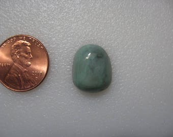 Firefly Turquoise Cabochon