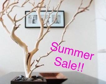 "30"" Natural Tree Jewelry holder / Jewelry Organizer WEST COAST"