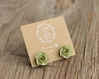 Green Succulent Planter Stud Earrings Wholesale Small Hypoallergenic Studs Earstuds Succulent Plants Jewelry Wedding Birthday Bridal