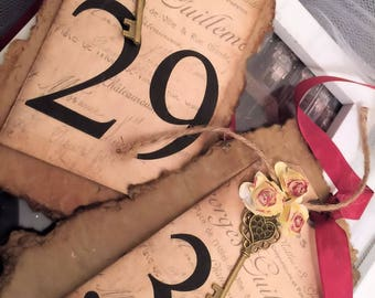Table Numbers Vintage / Aged Country Wedding / Vintage Wedding