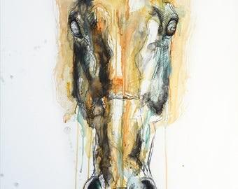 Original Fine Art, Horse Head Painting, Equine Art, Contemporary & Modern Art, Equus