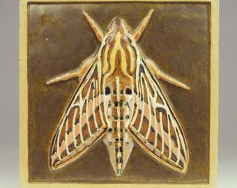 Sphinx Moth Ceramic Tile