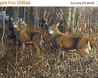 12% off thru July HEADING FOR COVER Northcott digitally printed panel cotton quilt fabric 28 by 42 in Deer in the woods~Dp21379-10