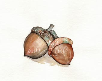Acorn Love, Acorns, Fall, Autumn, Earth tones, Watercolor Print, wall art