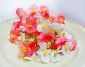 50+ Organic, Real EDIBLE MIXED BEGONIAS, Fresh , Pink, Peach, Yellow, White, Cream, Flowers, Bulk, Cupcakes, Wedding Cakes, Free Overnight