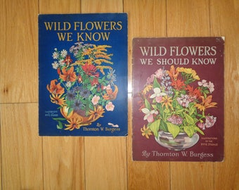 Almost Antique Wild Flower Pamphlets with wonderful lithographic prints, Written by Thornton W. Burgess and illustrated by the Pitts Studios