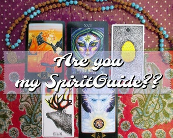 Are you my Spirit Guide??: A Tarot & Oracle Reading for Meeting Your Team from the Other Side