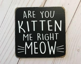 Are you kitten me right meow -  kitchen magnet - stocking stuffer special - buy 3 get 1 free - Christmas gift - kitchen decor