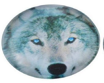 glass cabochon, Wolf, round, 12mm, magnifying glass,
