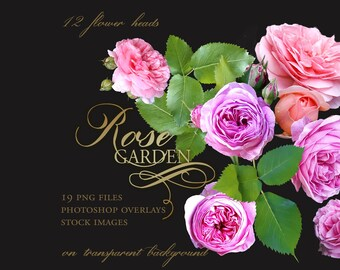Rose Garden Stock Imgs PS Overlays