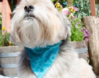 "Dog Bandana - Over the Collar Reversable Turquise  - Small -  Washable Cotton - Dog Scarf  - Puppy Bandana  7 1/2"" by 5.5"""