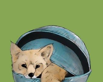 Fox in a bowl - A3 poster