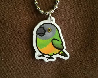 "Chubby Senegal Parrot 1"" Pendant and Stainless Steel Ball Chain Necklace"