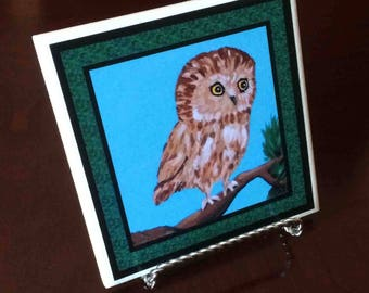Owl Coaster (choice of border color)