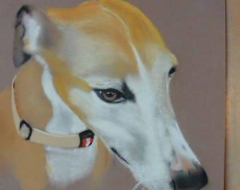 pastel Greyhound poster print