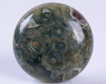 2 pcs of 25mm Green rhyolite jasper round flatback cab cabochon