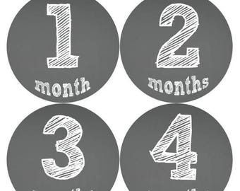 Monthly Stickers Monthly Baby Stickers Baby Month Milestone Stickers Baby Month Stickers Month to Month Bodysuit Stickers Shower Gift 121