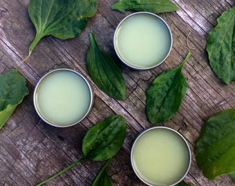 Plantain Salve, Herbal Salve, Medicinal Salve, Salve