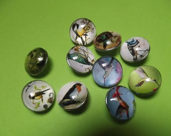 """male"" sold X 10, 20 mm snaps decor birds top clear plastic buttons"