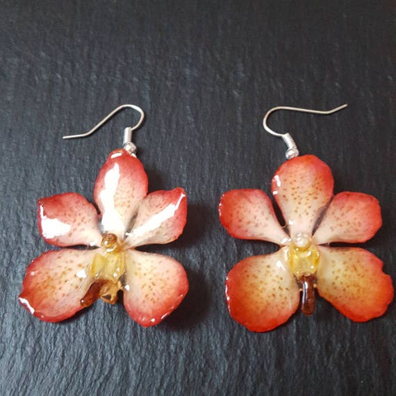 Small Real Mokara Orchid flower earrings in peach orange and cream