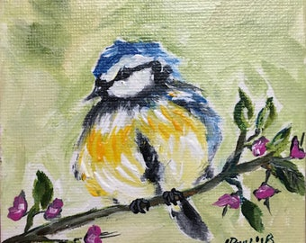 Cute little Fluffy Fat UK Blue Tit Chick Bird perched on a branch! Original Miniature Painting 4x4