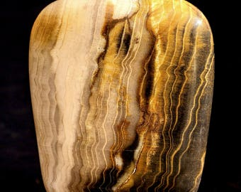 Beautiful Polished Washington Petrified Wood Tapered Square Cabochon