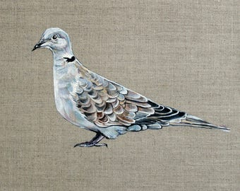ORIGINAL Collared Dove Painting - 30x30cm Square Linen Canvas Board - Acrylic Wall Art - Bird & Nature Artwork - Doves Peace Love Gift