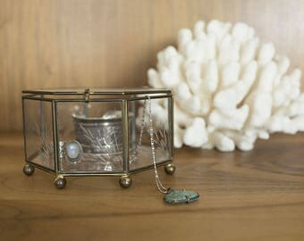 Vintage Etched Glass Brass Jewelry Display Box Terrarium