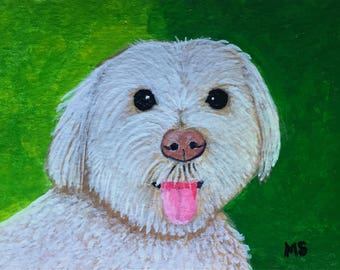 Maltese Portrait, Custom Pet Portrait of your Pet, Poodle Dog,Original Art, Gift for her,Gift Idea, Pet Lovers, ACEO,2.5x3 in, Made to Order