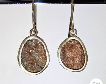 Silver earrings with ancient coin