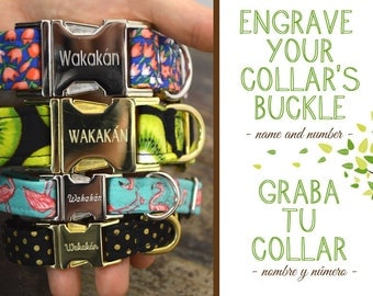 Engraved Dog Collar Buckle UPGRADE. Name and number. Wakakan
