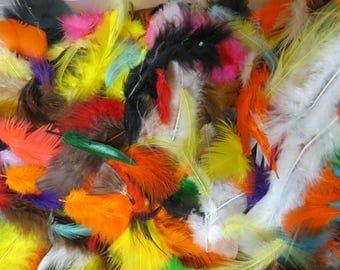 feather fluffs- bright asst
