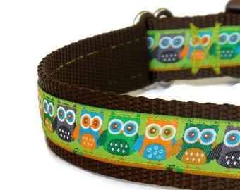 Pre-Made/Ready-to-Ship Light Green Owls Boy Dog Collar (Buckle)