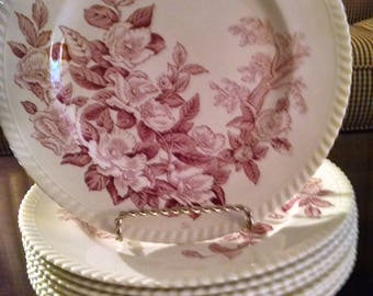 8 johnson brothers 10 inch pink apple blossom plates