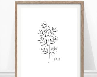 Dill Print, Kitchen Herb Print, Hand Drawn Herb, Kitchen Wall Art, Herbs and Spices