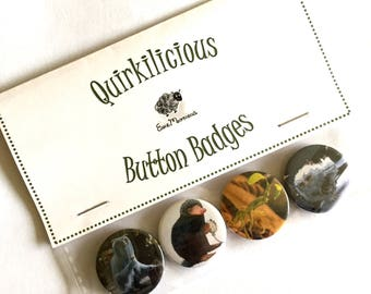 Fantastic Beasts Inspired Pinback Button Badges 25mm, Creatures Badges, Pickett, Demiguise, Niffler, Bowtruckle, Quirky, Fun, Gift