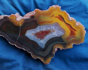 Condor Agate Collector Display Specimen